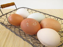 Eggs with natural coloring Stock Photos