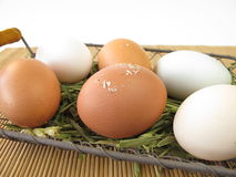 Eggs with natural coloring Royalty Free Stock Photo