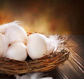 Eggs in the Nest. Easter Eggs in the nest. Close-up Image Stock Image