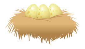 Eggs and nest Royalty Free Stock Photos