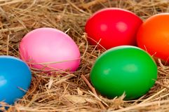 Eggs in nest Royalty Free Stock Photography