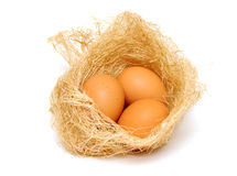 Eggs in the nest. Three brown eggs in the nest Royalty Free Stock Photography