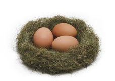 Eggs in the nest. Isolated on white backgroung Stock Photography