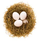 Eggs in a nest. Three chicken white eggs in a small nest from a dry grass on a white background Royalty Free Stock Images