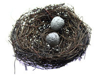 Eggs in Nest. Two speckled eggs in a twig bird nest Stock Image