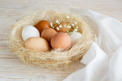 Eggs in a nest. Brown and white eggs in a nest on a white wooden table royalty free stock images