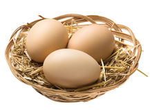 Eggs in nest clipping path Royalty Free Stock Photo