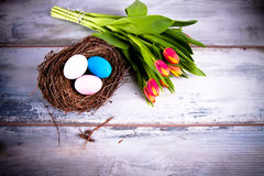Eggs in the nest Royalty Free Stock Images