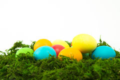 Eggs in the nest for Easter. Painted eggs in the nest for Easter Royalty Free Stock Images