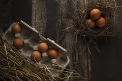 Eggs in a nest and egg carton. Fresh eggs in a nest and egg carton on dark background Stock Images