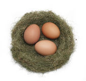 Eggs in the nest. Isolated on white background Stock Photography