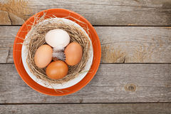 Eggs nest on plate Royalty Free Stock Images