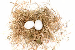 Eggs are in the nest Royalty Free Stock Photography