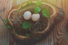 Eggs in the nest on rustic wooden background Stock Photography