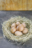 Eggs in nest. Still life brown eggs in nest on wooden background royalty free stock photos