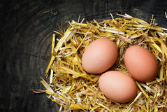 Eggs in a nest of straw on dark wooden background, copy space Stock Photo