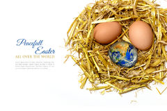 Eggs and globe in a nest of  straw, isolated on white background Stock Photos