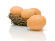 Eggs in a nest on a white background Royalty Free Stock Photo