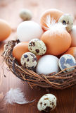 Eggs in a  nest on a wooden table Royalty Free Stock Images
