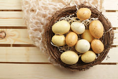 Eggs in a Nest, Stock Photo