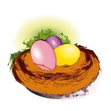 3 eggs in a nest, yellow pink violet. Brown nest, green grass around. Image/ illustration. Eastern painted eggs inside the nest. Yellow, pink, violet Royalty Free Stock Photo