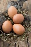Eggs on net Royalty Free Stock Photos