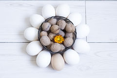 Eggs and nuts Stock Image