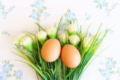 Eggs o estilo velho do vintage imagens de stock royalty free