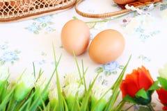 Eggs o estilo velho do vintage imagens de stock