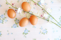 Eggs o estilo velho do vintage Fotografia de Stock Royalty Free