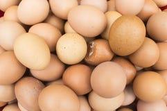 Eggs o fundo Fotos de Stock