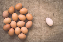 Eggs on old crumpled burlap Stock Image