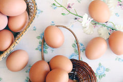 Eggs old vintage style. On retro background Royalty Free Stock Image
