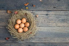 Eggs on old wood Stock Photo