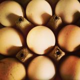 Eggs. One special egg Stock Photo