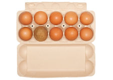 Eggs and one stranger Stock Images