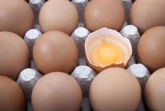Eggs open Stock Images
