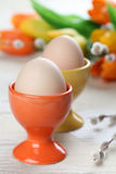 Eggs in orange and yellow eggcups. With tulips and catkins in background Royalty Free Stock Photography