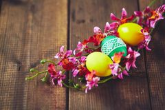 Eggs in orchids Royalty Free Stock Photography