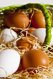 Eggs out of the basket 5 Stock Image