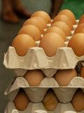 Eggs pac cardboard detail in the foreground 2. Ecological eggs pac cardboard detail in the foreground in the market of Gernika, Basque Country 2 Royalty Free Stock Photos