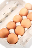 Eggs in pack Royalty Free Stock Photography