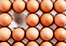 Eggs pack Stock Image
