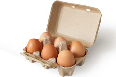 Eggs in a Pack. Isolated fresh eggs in a recycle paper packaing Stock Photos
