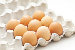 Eggs pack in a box Stock Images