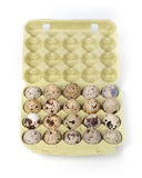 Eggs in package Stock Photo