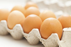 Eggs package Stock Images