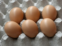 Eggs in the package Stock Photography