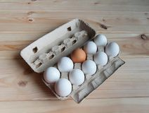 Eggs in the package Stock Images