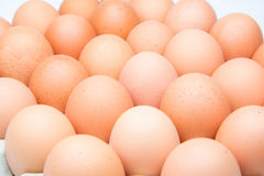 Eggs in the package. Many Eggs in the package Royalty Free Stock Image